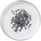 L'Oréal Paris Botanicals Lavender sampon érzékeny fejbőrre