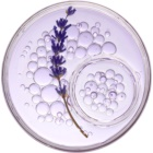 L'Oréal Paris Botanicals Lavender шампунь для чутливої шкіри голови