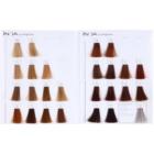 L'Oréal Professionnel Inoa Supreme barva na vlasy bez amoniaku