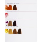 L'Oréal Professionnel LuoColor culoare par