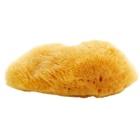 Magnum Natural karibská mořská houba