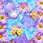 Marc Jacobs Daisy Twinkle Eau de Toilette for Women 50 ml