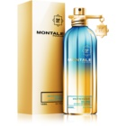 Montale Intense So Iris ekstrakt perfum unisex 100 ml