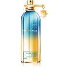 Montale Intense So Iris extract de parfum unisex 100 ml