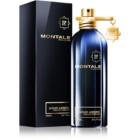 Montale Aoud Ambre parfémovaná voda unisex 100 ml