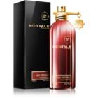 Montale Red Vetiver parfumovaná voda pre mužov 100 ml