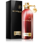 Montale Sliver Aoud parfémovaná voda pro muže 100 ml