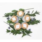 Paddywax Sonora Bergamot & Fresh Fig vonná sviečka 283 g