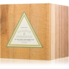 Paddywax Woods Eucalyptus & Sandalwood vonná svíčka 141 g
