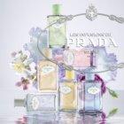 Prada Les Infusions:  Infusion Iris eau de parfum para mulheres 100 ml