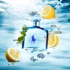 Ralph Lauren Polo Ultra Blue eau de toilette pentru barbati 125 ml