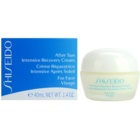 Shiseido Sun After Sun Intensive Recovery Cream for Face