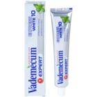 Vademecum Expert Express White 10 pasta za zube s izbjeljivajućim učinkom
