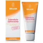 Weleda Dental Care Toothpaste