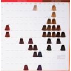 Wella Professionals Color Touch Rich Naturals hajfesték