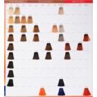 Wella Professionals Color Touch Vibrant Reds culoare par