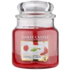 Yankee Candle Cherries on Snow vela perfumado 411 g Classic médio