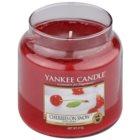 Yankee Candle Cherries on Snow vonná svíčka 411 g Classic střední