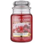 Yankee Candle Cranberry Ice vonná sviečka 623 g Classic veľká