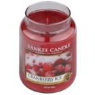 Yankee Candle Cranberry Ice Scented Candle 623 g Classic Large