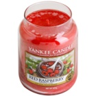 Yankee Candle Red Raspberry Duftkerze  623 g Classic groß