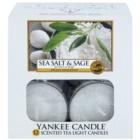 Yankee Candle Sea Salt & Sage teamécses 12 x 9,8 g