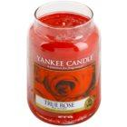 Yankee Candle True Rose candela profumata 623 g Classic grande