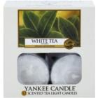 Yankee Candle White Tea čajová sviečka 12 x 9,8 g