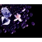 Yves Saint Laurent Black Opium Nuit Blanche parfémovaná voda pro ženy 90 ml