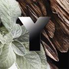 Yves Saint Laurent Y eau de parfum per uomo 100 ml