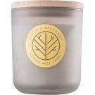 DW Home Cedar & Bergamont vonná svíčka s dřevěným knotem