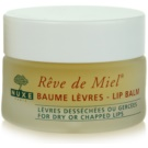 Nuxe Reve de Miel výživný balzám na rty