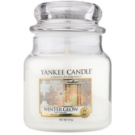 Yankee Candle Winter Glow vonná svíčka Classic střední