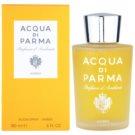 Acqua di Parma Ambra Room Spray 180 ml