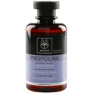 Apivita Propoline Cinchona & Propolis champô para volume (Dermatologically Tested) 250 ml