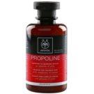 Apivita Holistic Hair Care Sunflower & Honey shampoing pour cheveux colorés  250 ml