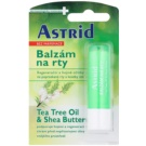 Astrid Lip Care balsam regenerujący do ust (Tea Tree Oil & Shea Butter) 4,8 g