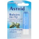 Astrid Lip Care Balsam de buze hranitor cu ulei de jojoba (Sunflower Oil, Vitamin E, UV Protection) 4,8 g