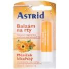Astrid Lip Care regenerierendes Lippenbalsam mit Ringelblume (Vitamin E) 4,8 g