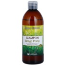 Barwa Herbal Horsetail champô anti-queda capilar 480 ml