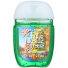 Bath & Body Works PocketBac Fall Lakeside Breeze antibakteriális gél kézre (Fall Lakeside Breeze) 29 ml