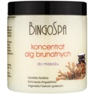 BingoSpa Algae концентрат за масаж с кафяви водорасли  150 гр.