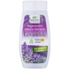 Bione Cosmetics Lavender champô regenerador para todos os tipos de cabelos (Keratin, Panthenol, Lavender Oil) 260 ml