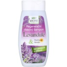 Bione Cosmetics Lavender champô regenerador para todos os tipos de cabelos (Keratin, Panthenol, Lavender Oil) 250 ml