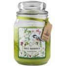 Bohemia Gifts & Cosmetics Milé Mamince vonná svíčka 510 g