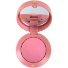 Bourjois Blush blush tom 048 Cendre de Rose Brune 2,5 g