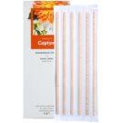 Caption Amber Dahlia Fragranced Sticks 6 pc for Interiors