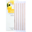 Caption Tuscan Lemon Fragranced Sticks 6 pc for Interiors