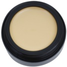 Catrice Camouflage Cover Make - Up Color 020 Light Beige 3 g