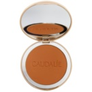 Caudalie Teint Divin pó bronzeador matificante para todos os tipos de pele (Mineral Bronzing Powder) 10 g